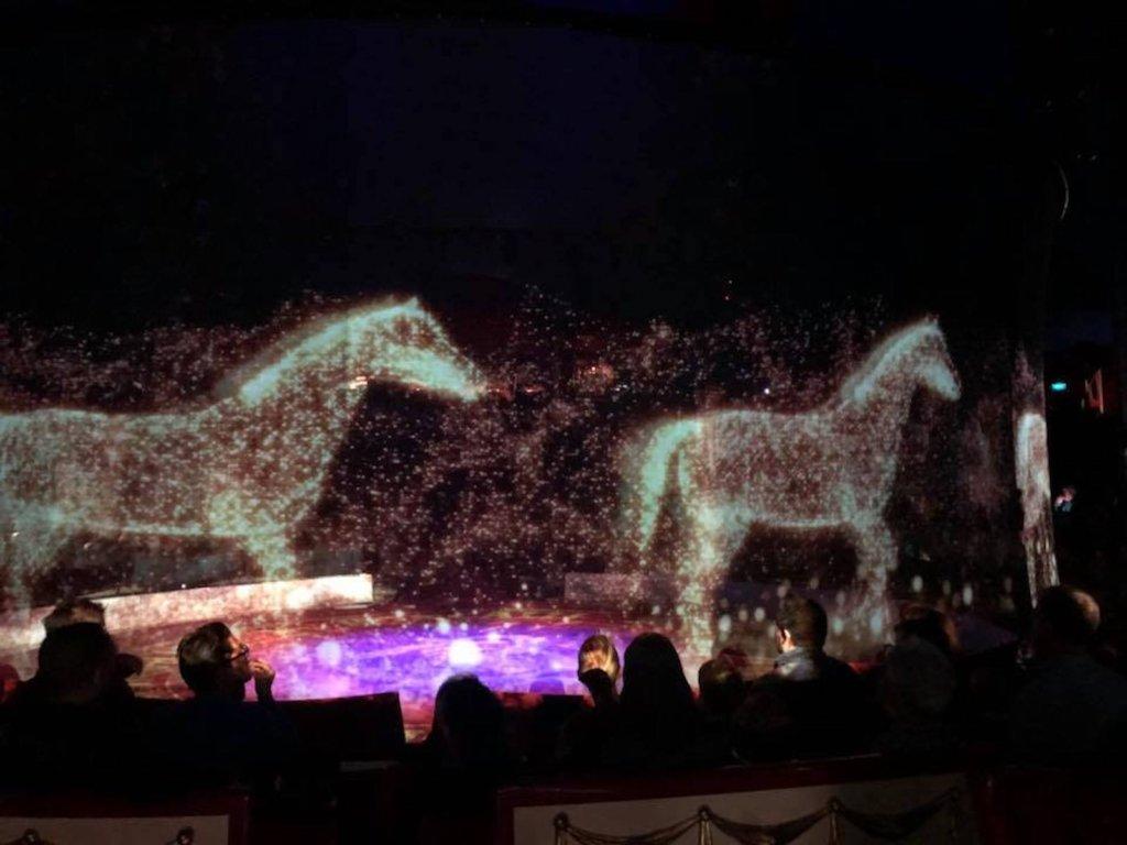 circus、3Dホログラム、サーカス、Circus Roncalli、動物愛護